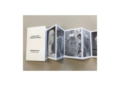 Artists' Books: an artist and curator's talk